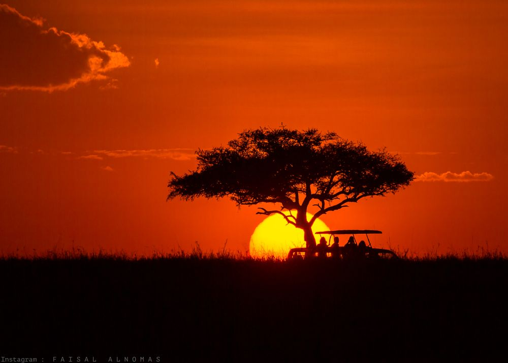 Photo in Landscape #silhouette #wildlife #wild #sun #sunset #dark #night #people #life #color #travel #youpic #canon #1dx #400mm #safari #kenya #masai