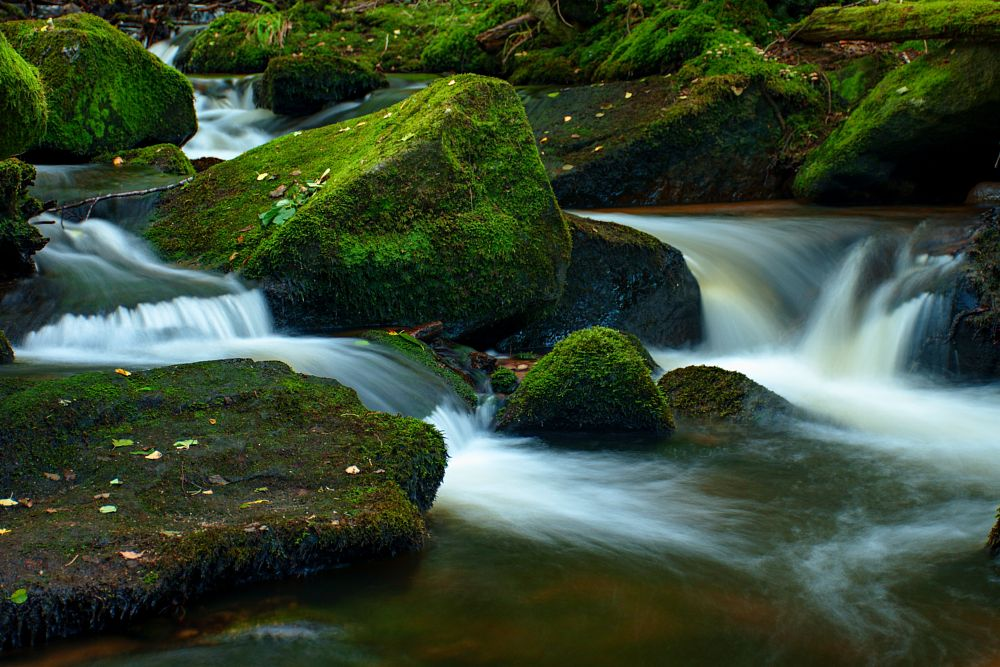 Photo in Landscape #menší vltavice #creek #waterfall #wolfgang #water #vyšší brod