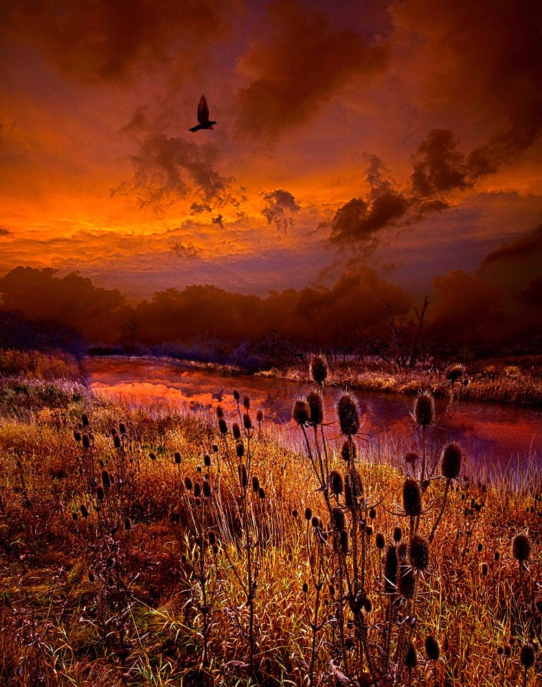 Photo in Random #sunrise #sunset #landscape #inspiration #serene #storm #clouds #sky #orange #red #wisconsin #horizons #phil koch
