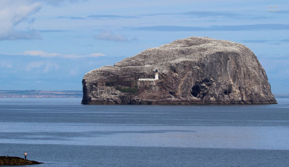 Photo in Landscape #bass rock #scotland