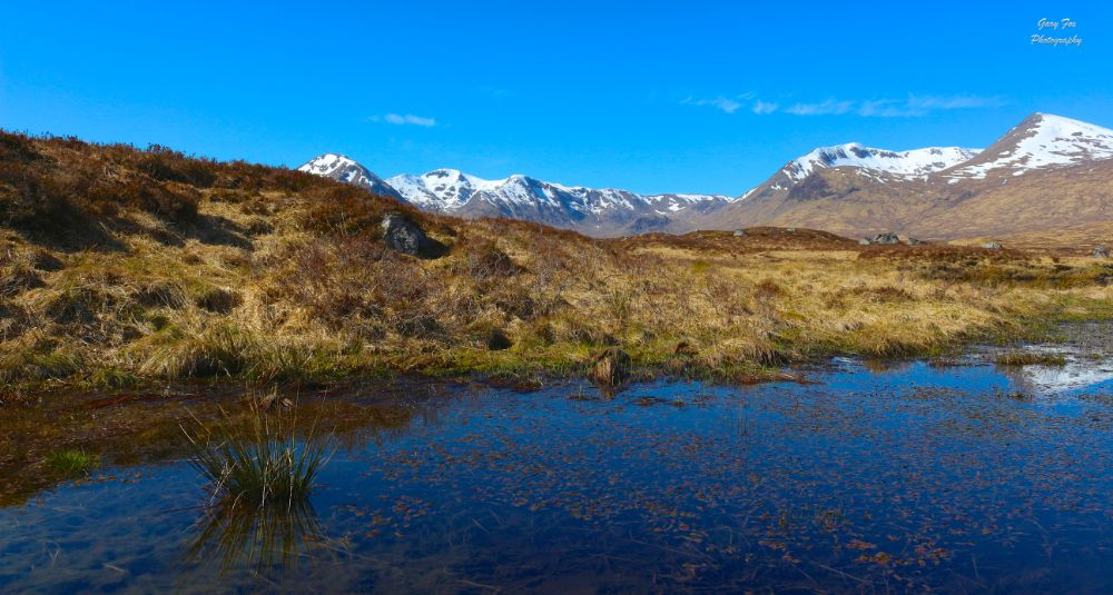 Photo in Landscape #rannoch moor #glencoe #scotland