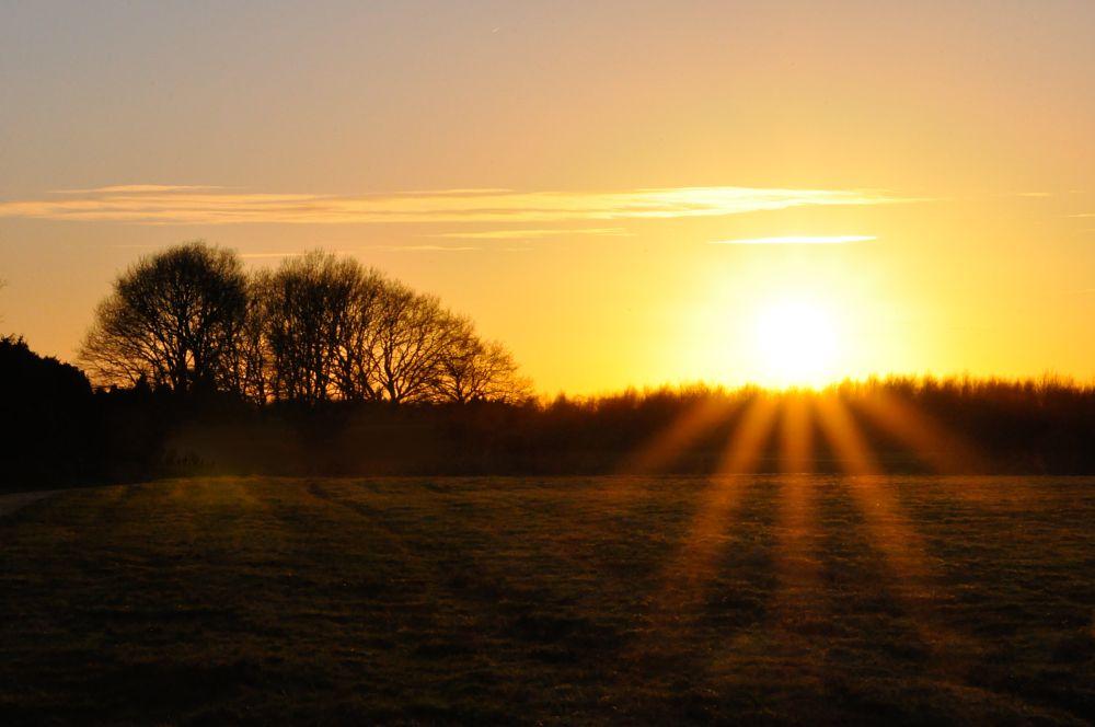 Photo in Landscape #sunset landscape