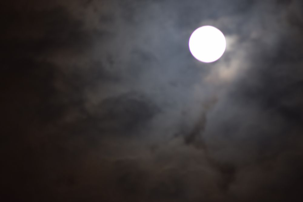 Photo in Fine Art #the moon