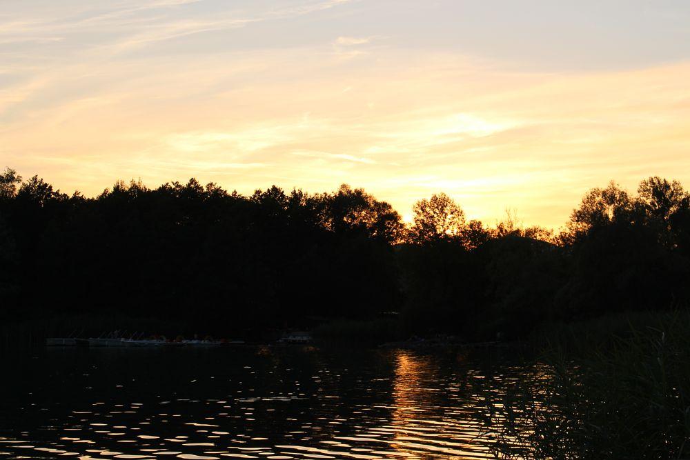 Photo in Landscape #lac #lake #lac d'aiguebelette #aiguebelette #canon #coucher de soleil #soir #savoie #france