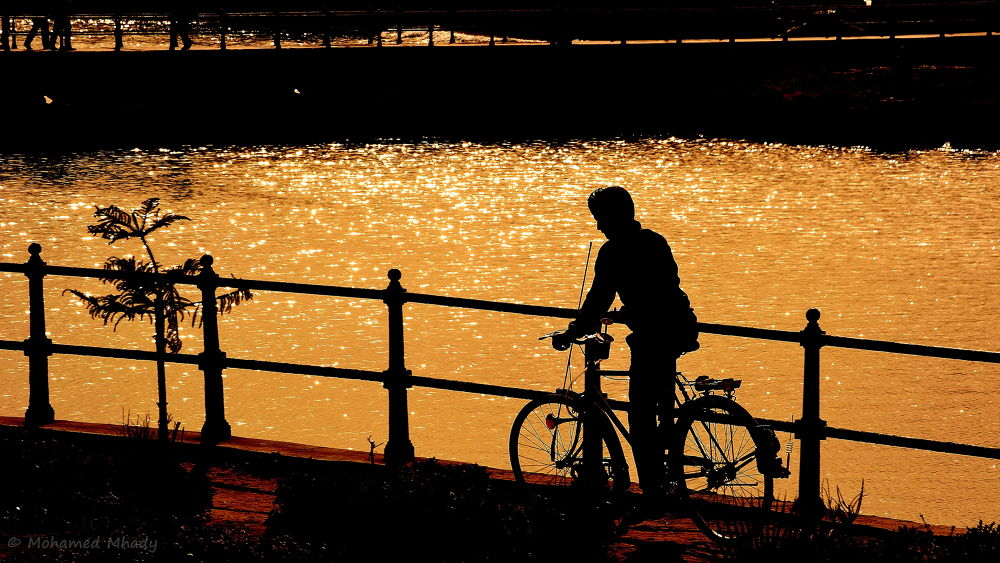 Photo in Landscape #silhouette #bicycle