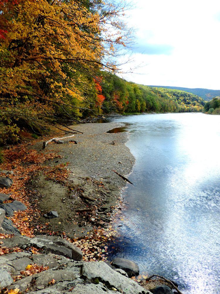 Photo in Nature #autumn #nature #fall #season #leaves #river #beauty