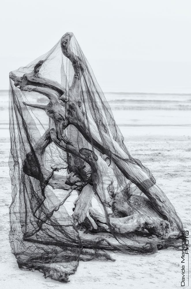 Photo in Fine Art #b&w #abstract #sea #beach #high key #fine art #blacknwhite