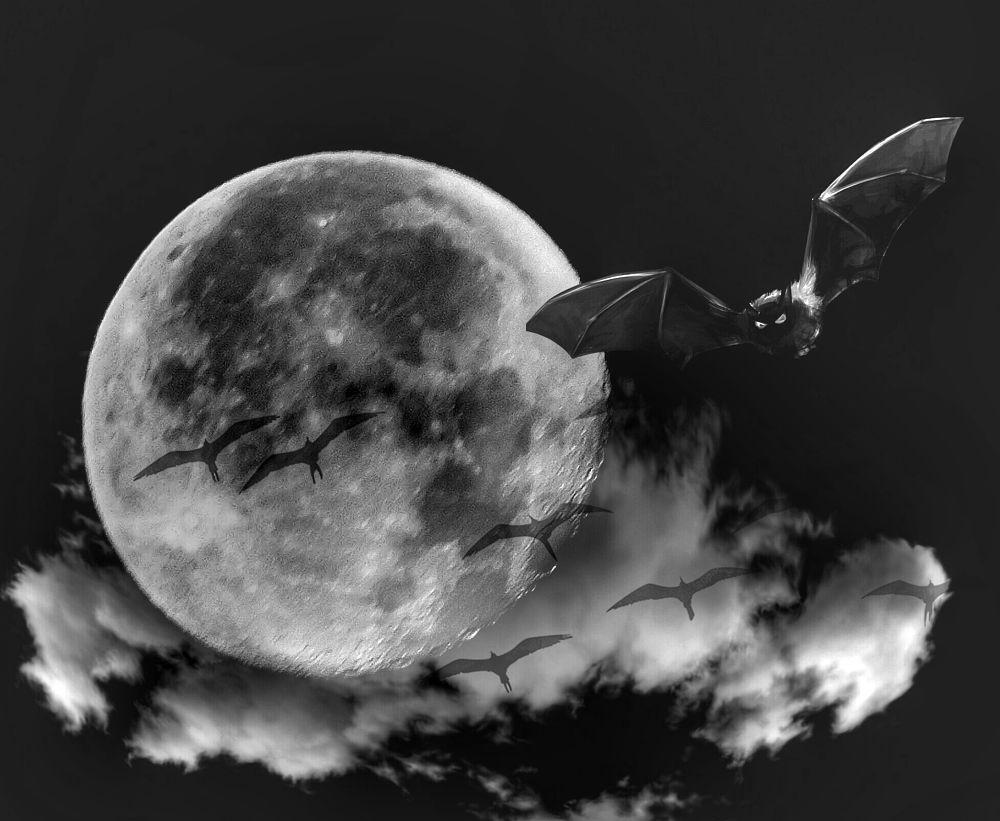 Photo in Random #picsartrefugees #darkart #blackandwhite #moon #edit #noir