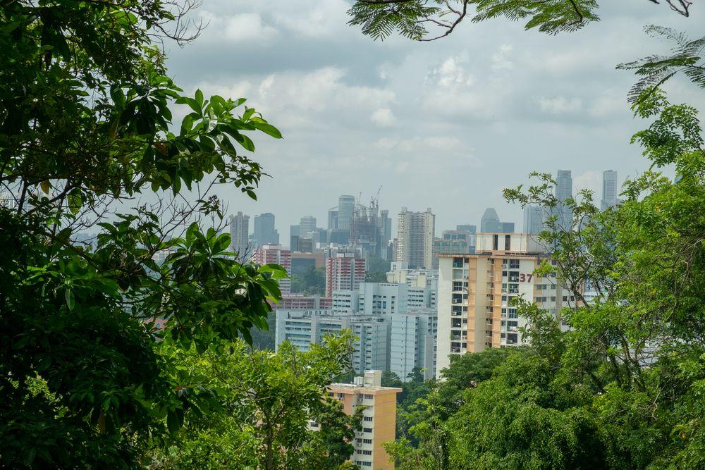 Photo in Cityscape #201807 #201807_singapore #asia #fuji x-e1 #singapore #sentosa #xf18-55mm #asia #core #city #downtown #singapore #capital #park #view #landscape #cityscape