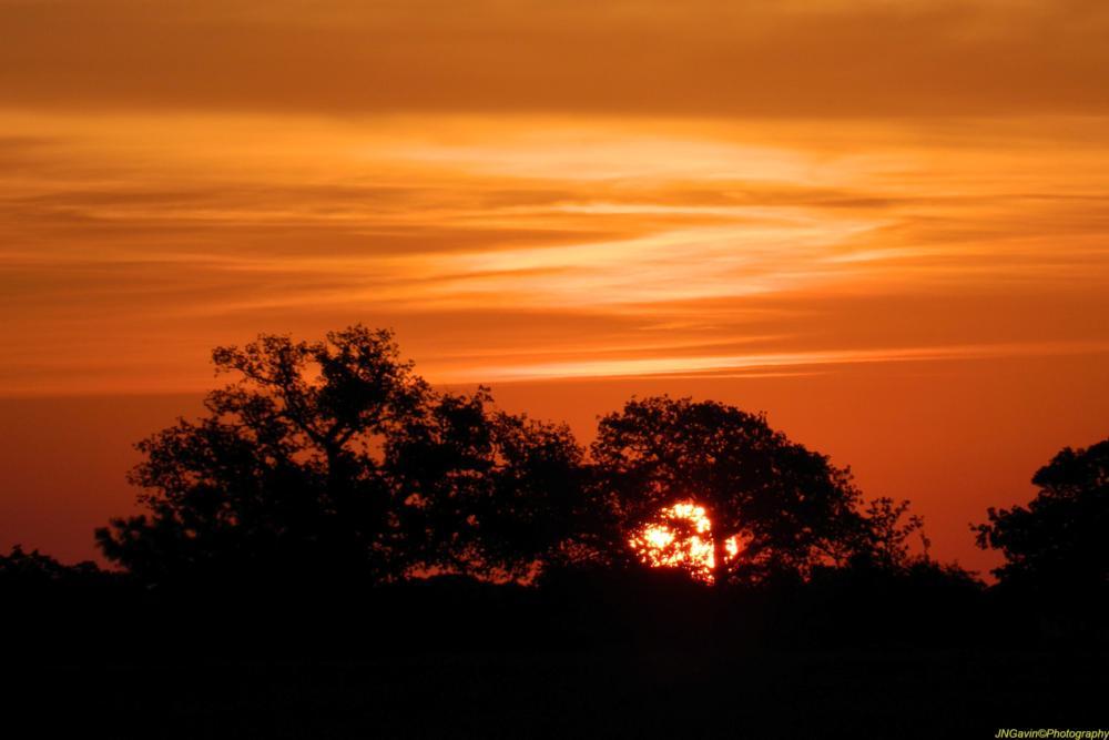 Photo in Nature #texas sunrise