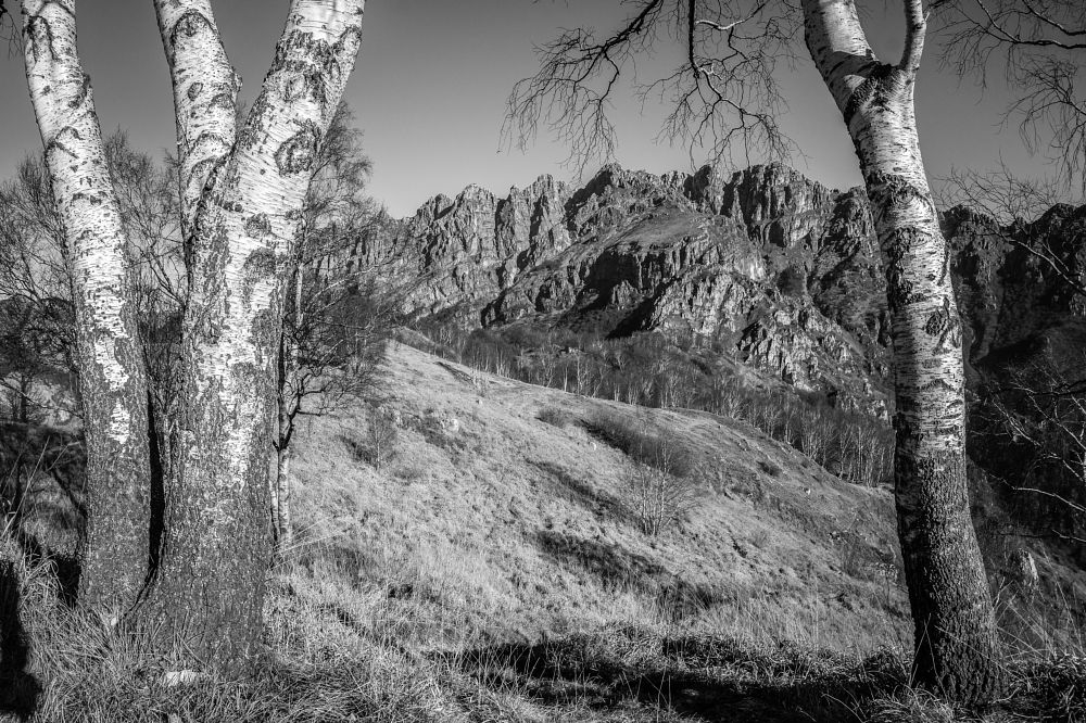 Photo in Black and White #mountain #winter #trees #rocks