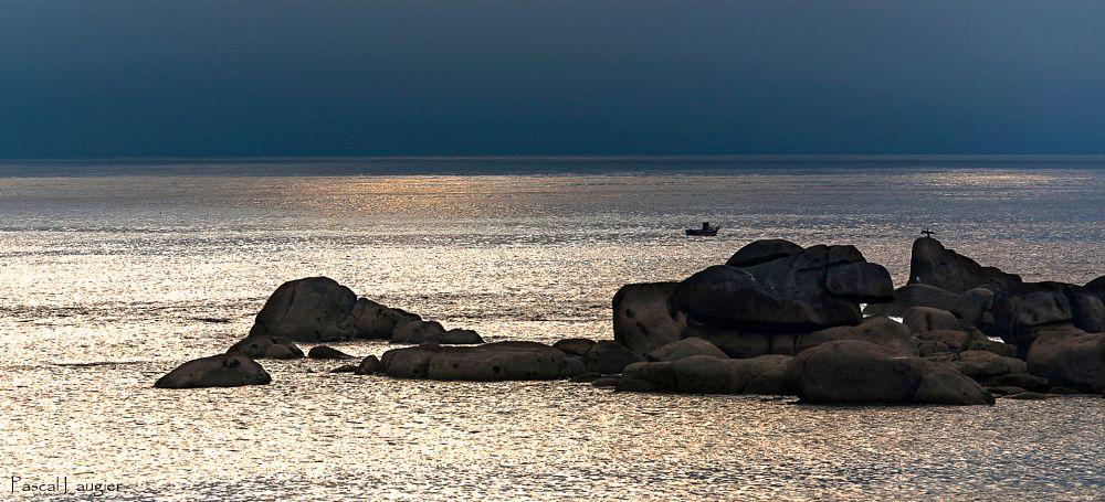 Photo in Landscape #bretagne #breizh #finistère #brittany #sea #seascape #littoral #rivage #coast #coastline #boat #fischerman #cormoran #cormorant #pêcheur #rochers #rocks #contre-jour #backlight