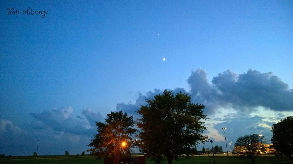 Photo in Landscape #dusk #moon #evening #clouds #trees #street lights #grass