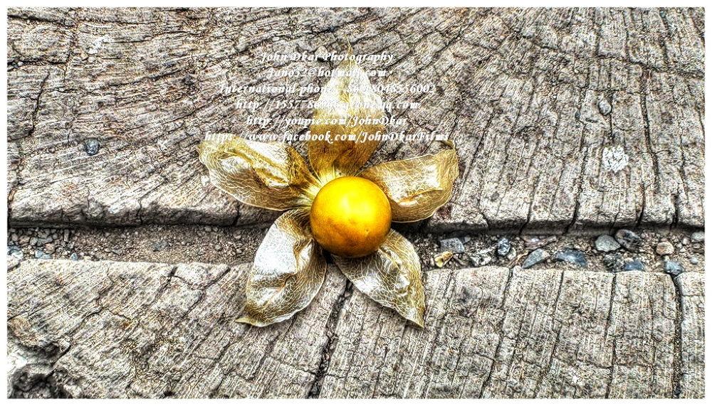 Photo in HDRI #aguaymanto #fruit #peru #trujillo #la libertad #yummy #hdr #john dkar
