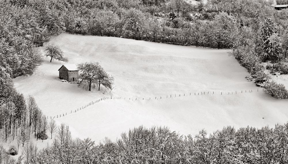 Photo in Landscape #neve #inverno #bosco #natura #baita #montagna