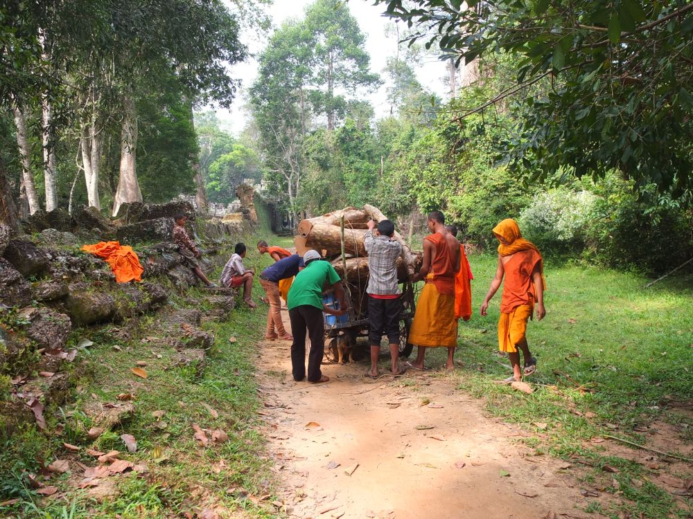 Photo in Travel #cambodia #siem reap #monks #jungle