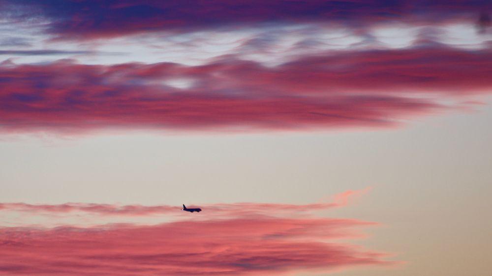 Photo in Landscape #plane #airplane #sky #red #orange #pink #blue #fly #travel #sunset #dusk