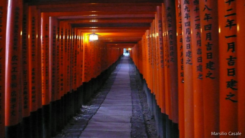 Photo in Travel #japan #tori #red #fushimi inari