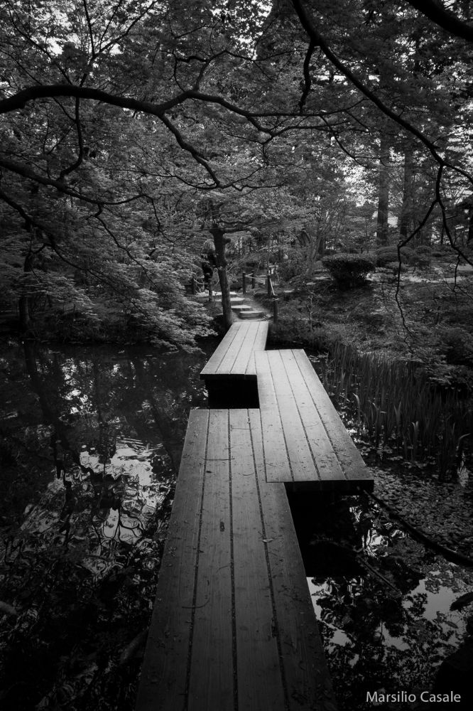 Photo in Black and White #japan #pond #passage #kyoto