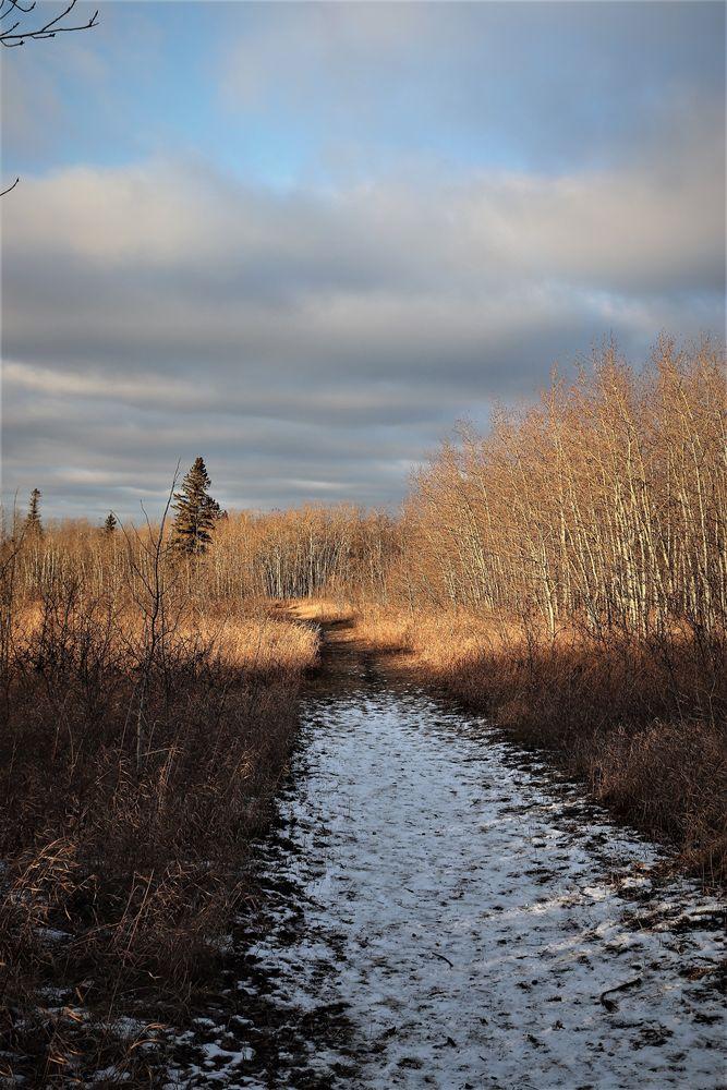 Photo in Landscape #https://www.facebook.com/david