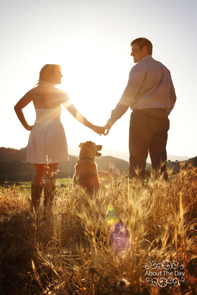 Photo in Portrait #engagement #sunset #canon #lighting #portrait #romance