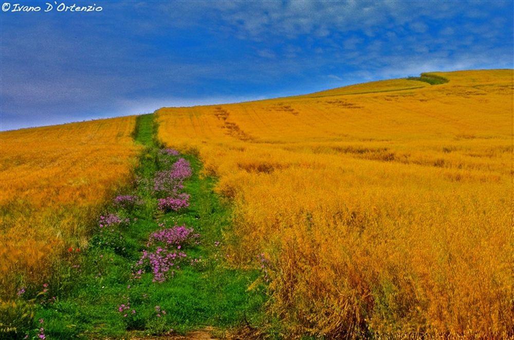 Photo in Landscape #of #italy #landscape #basilicata