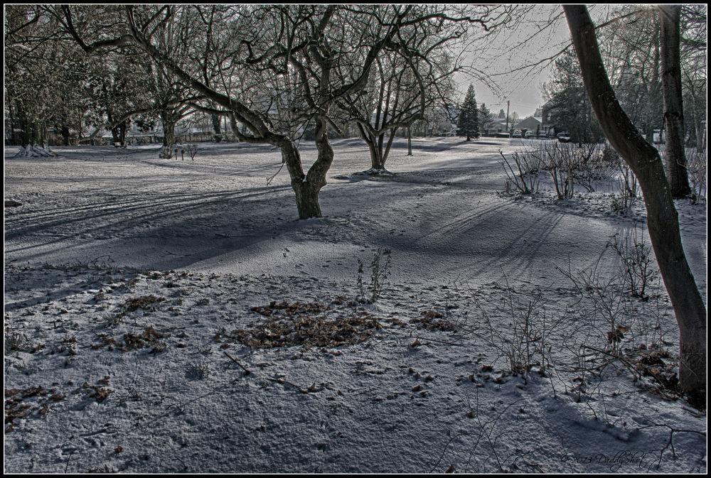 Photo in Random #snow #hdr