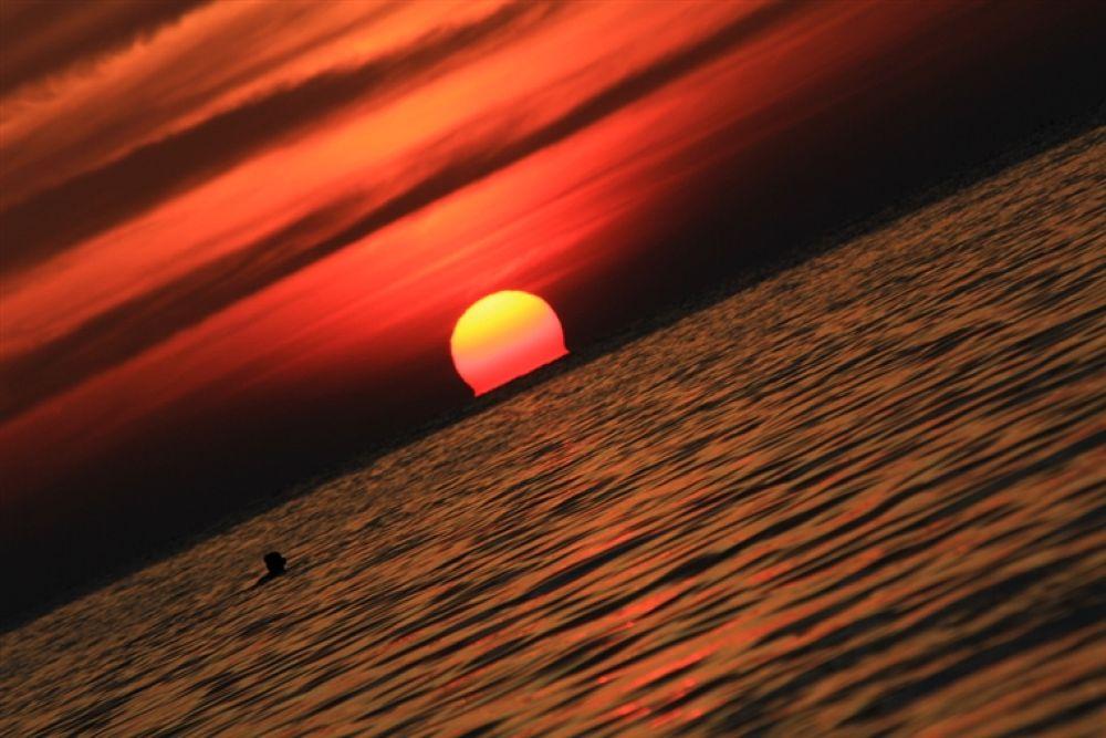 Photo in Random #down #flaming #sun #is #setting