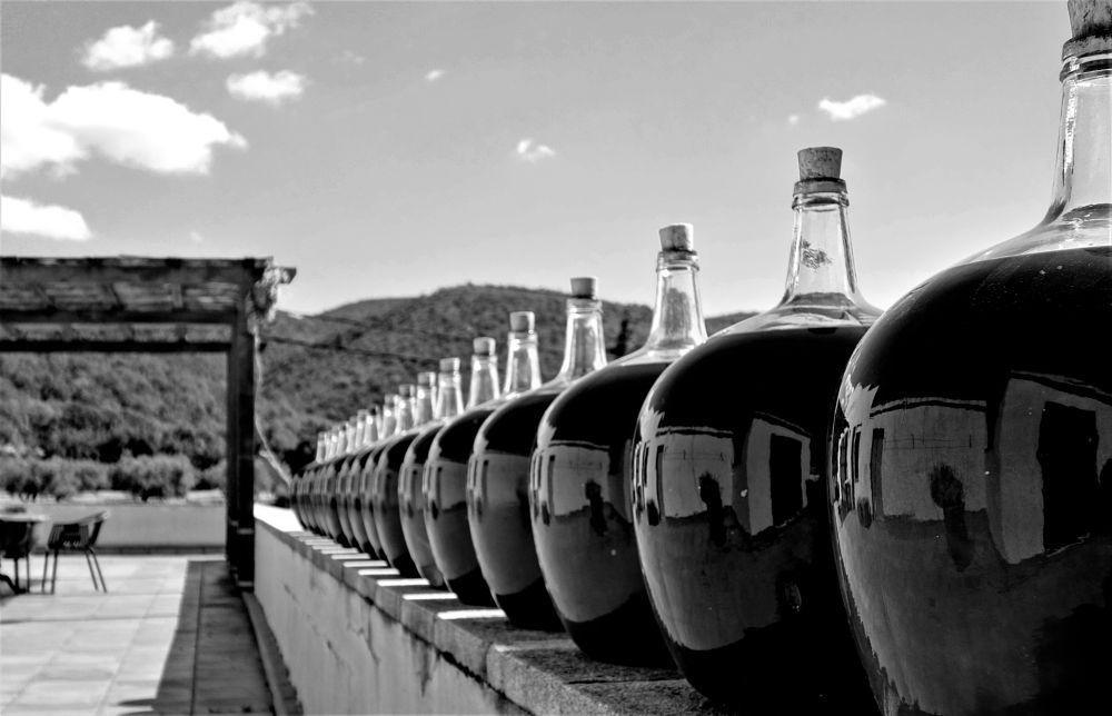 Photo in Black and White #blanc i negre #cantallops #reflexos #catalunya #l'alt empordà #empordà