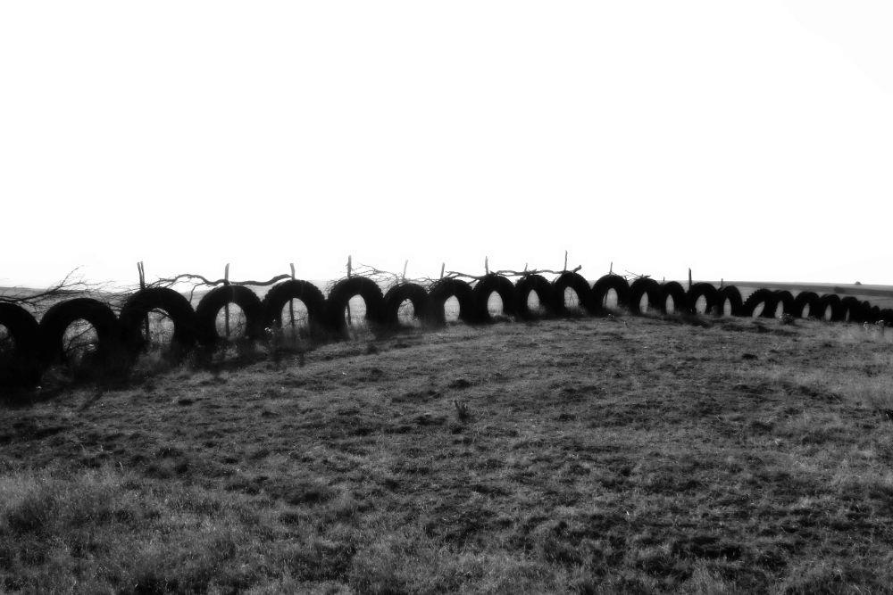 Photo in Random #tire #invasion #earth #pollution