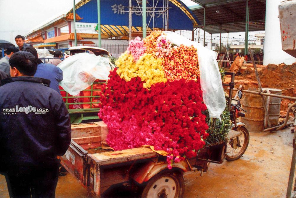 Photo in Random #yunnan - kunming flowermarket