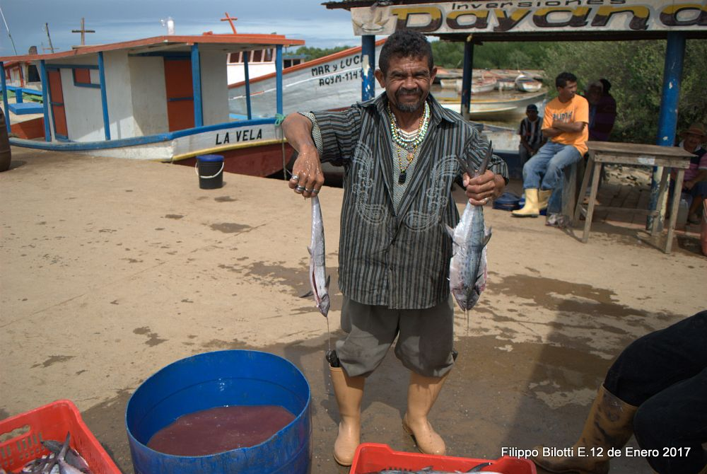Photo in People #pescador #pescatori #pez #pesce #pescado #lavoratore #trabajador #zazarida #falcon #venezuela