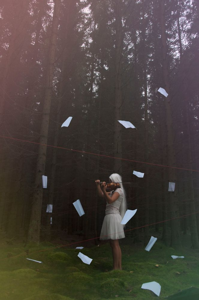 Photo in Fine Art #a4 #music #violin #paper #forest #school project #red thread