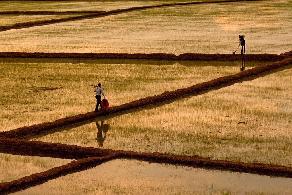 Photo in Travel #rice #man #osmancık #turkey
