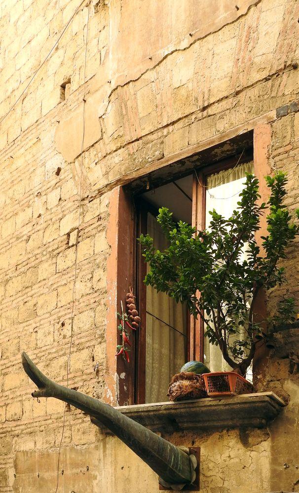 Photo in Fine Art #rua catalana #riccardo dalisi #arte contemporanea #contemporary art #statua #statue #sculpture #scultura #installation #installazione #arnaldo de lisio