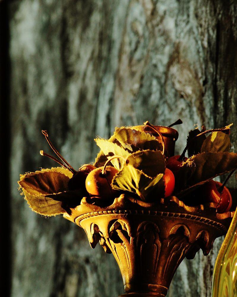 Photo in Nature #couleur #nature #lumiere #random #flower