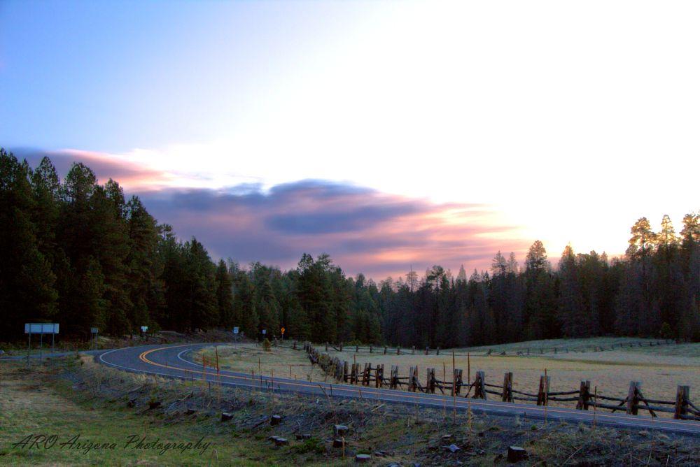 Photo in Landscape #sun rise #hannagan meadow #arizona #meadow #forest