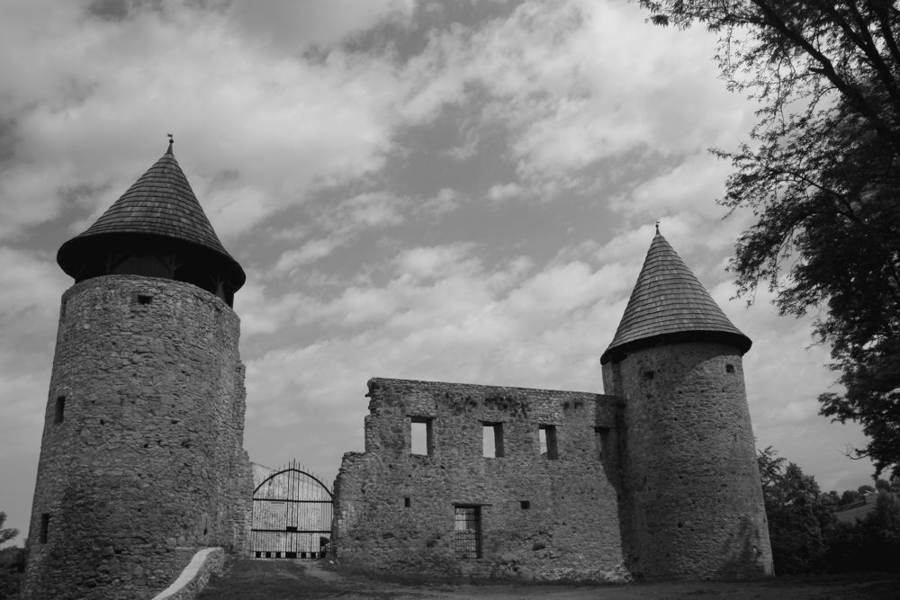 Photo in Black and White #novigrad na dobri