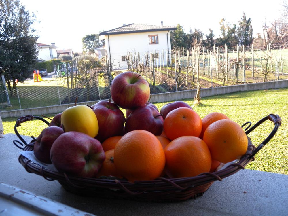 Photo in Still Life #apple fruit life good