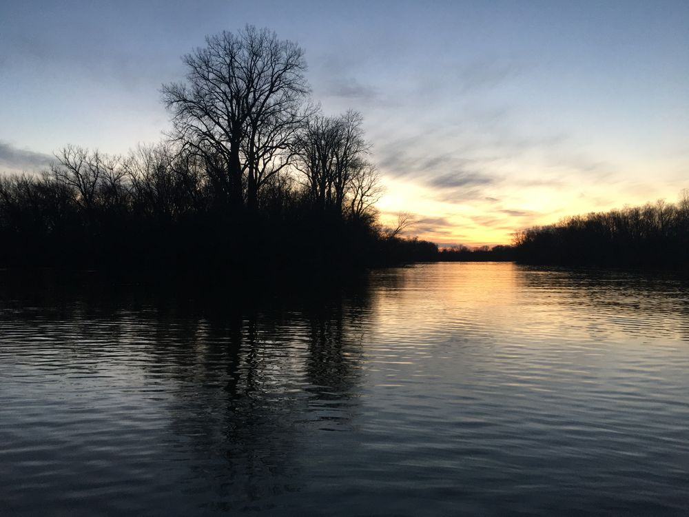 Photo in Landscape #river #sunset #silhouette