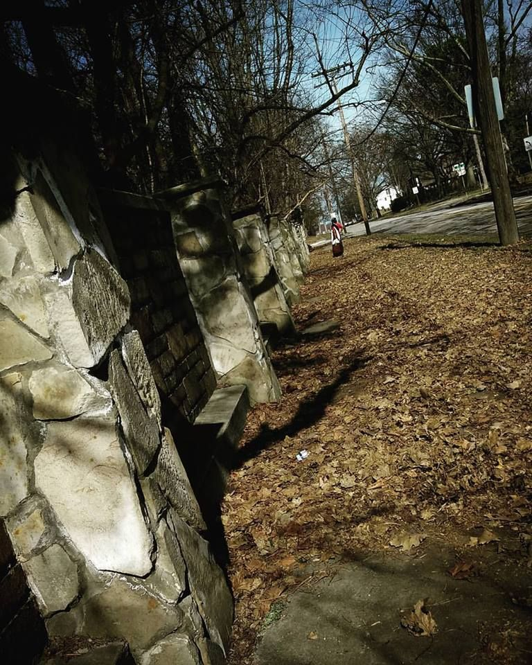Photo in Architecture #donald trump #wall #nature #leaves #fall #winter #autumn #solstice #summer