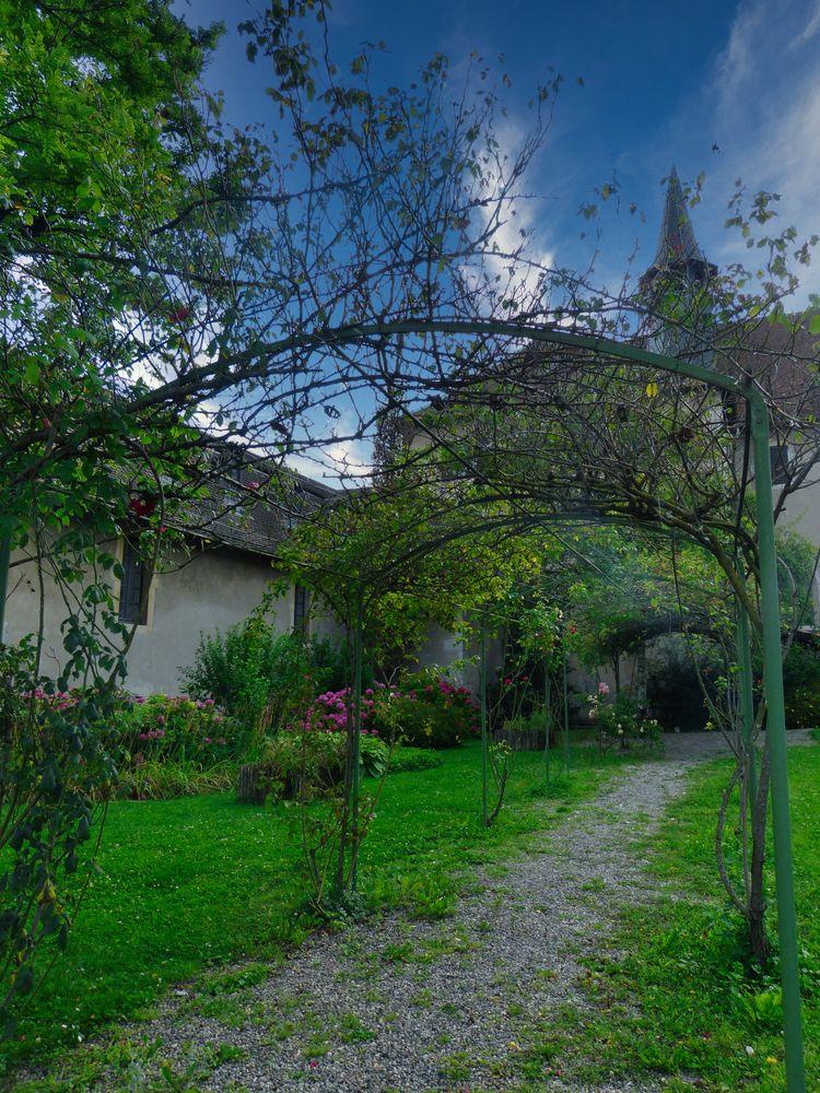 Photo in Random #garden