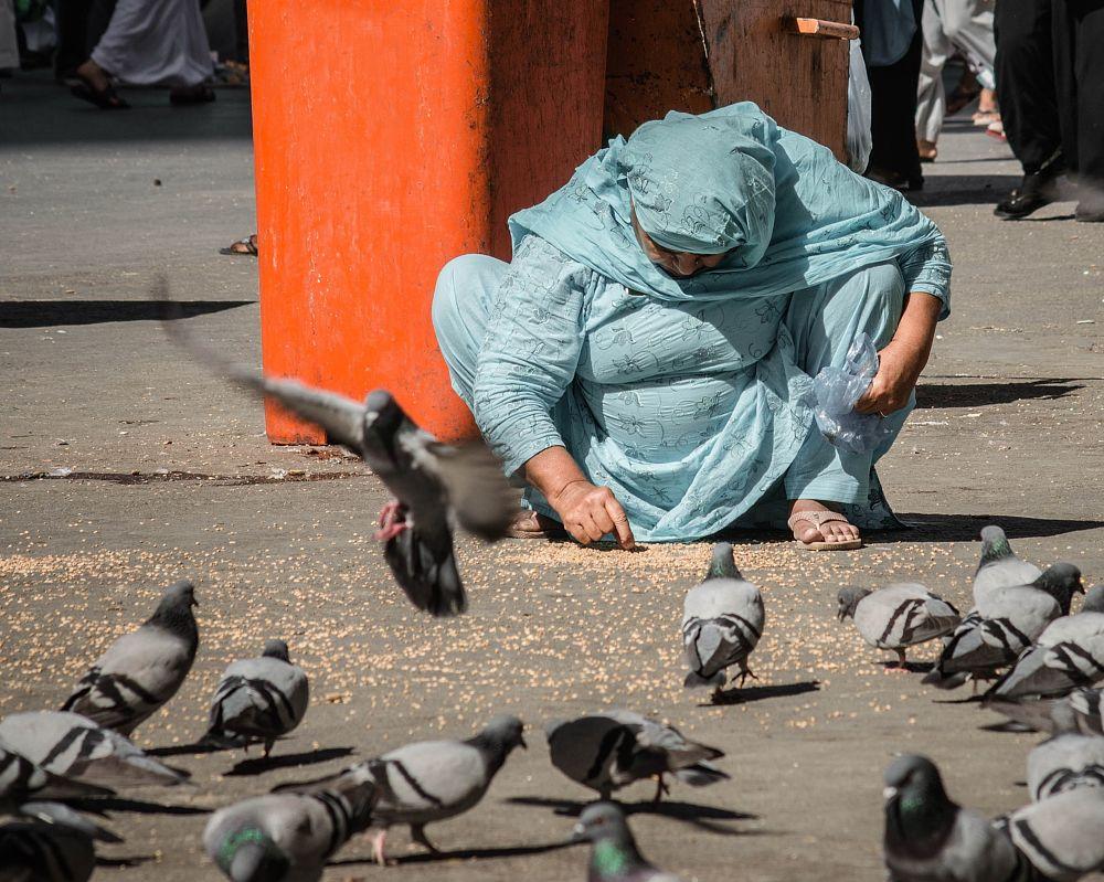 Photo in Street Photography #street photography #reportage #streets #makkah #portrait #woman #pilgrim #muslim #pigeons #seeds