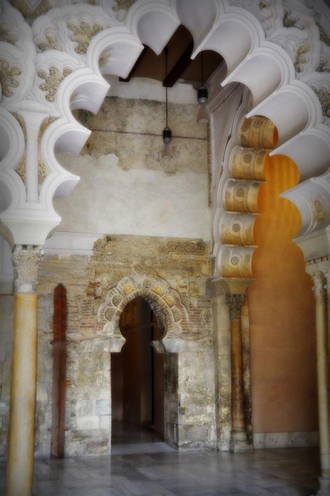 Photo in Random #palacio de la aljafewria zarag