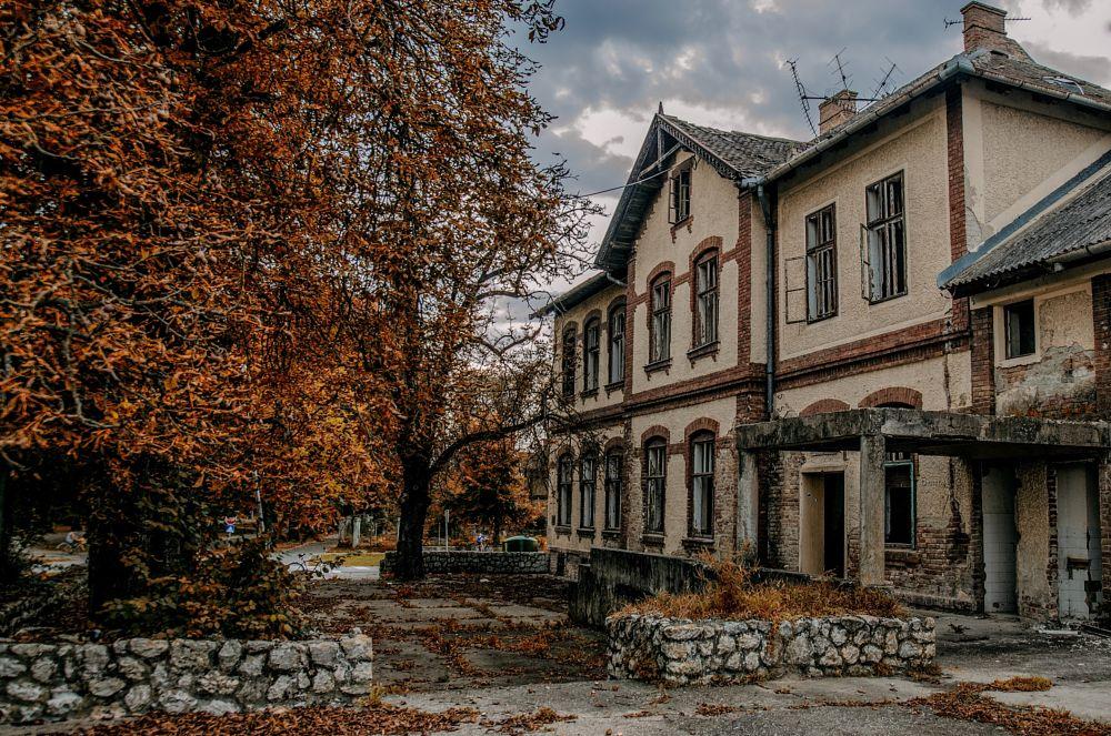 Photo in Rural #restaurant #old #autumn