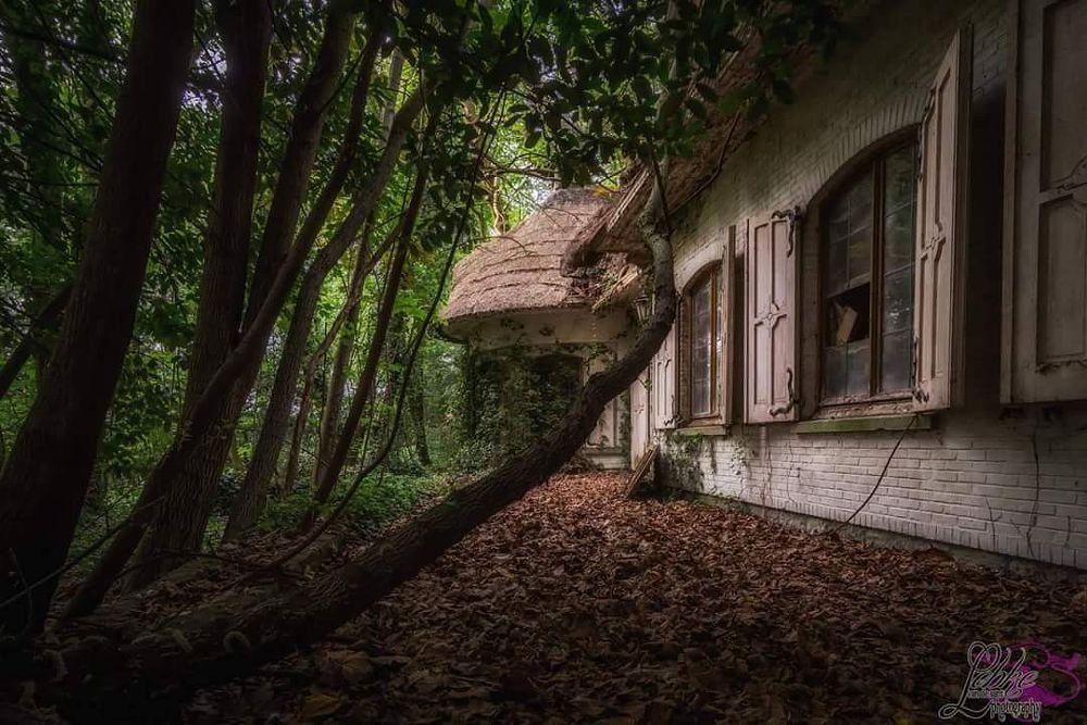 Photo in Random #urban #urbex #urbanfotography #urbexphotography #urbanexploration #abandonedplaces #abandonedplace #photoshooting #behindcloseddoors #exploring #exploring #abandonedhouse #abandonedbuildings #woods #autumn #forest #forgotten #fotgottenplaces #urbandecay #decay #photoshooting