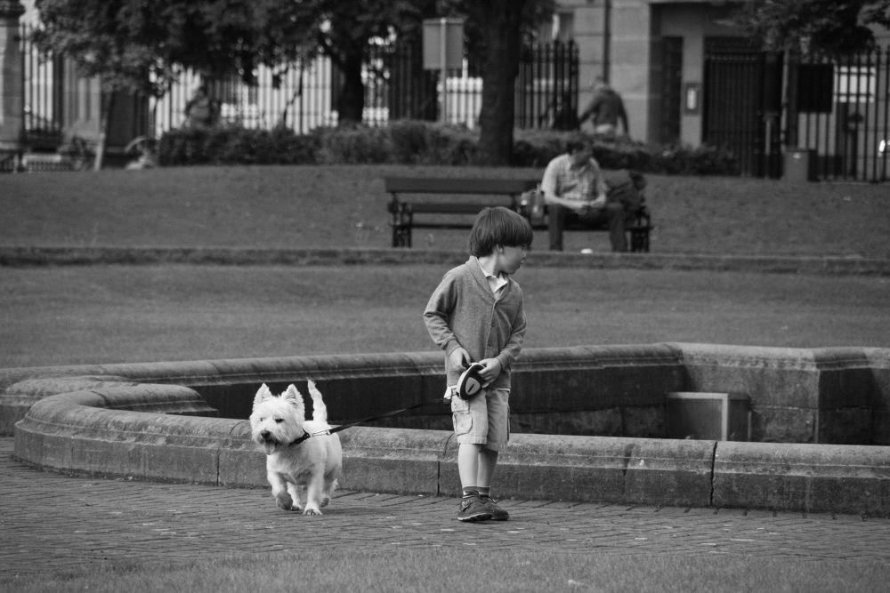 Photo in Random #dog #children #boy #dublin #irlande