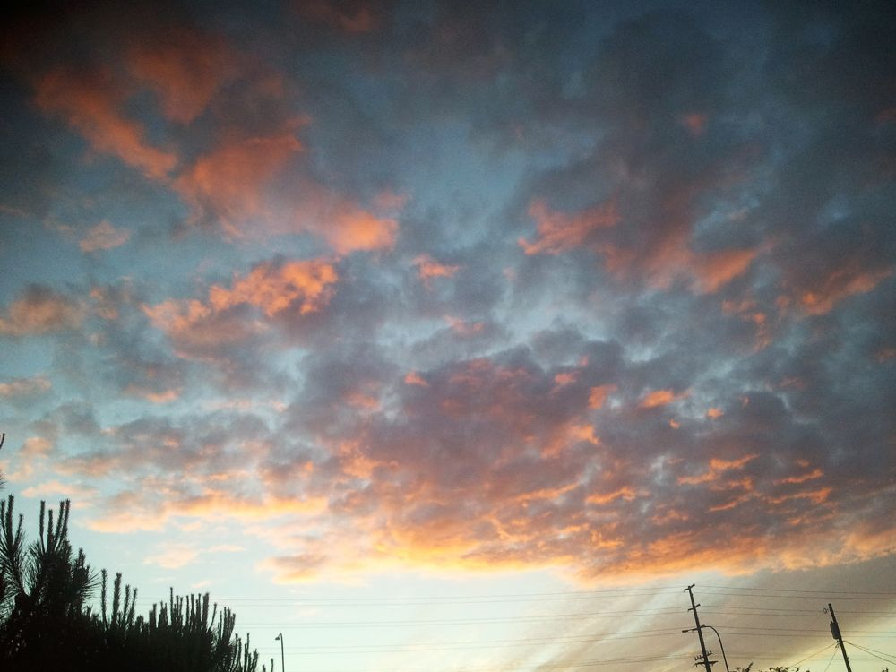 Photo in Random #sunset #city