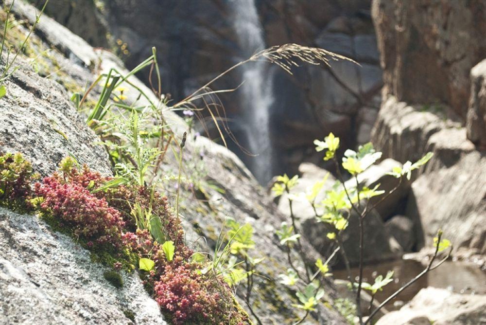 Photo in Random #waterfall #spendula's