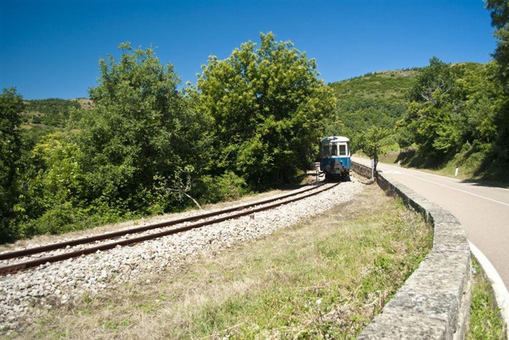 Photo in Random #trenino #sardinia #verde